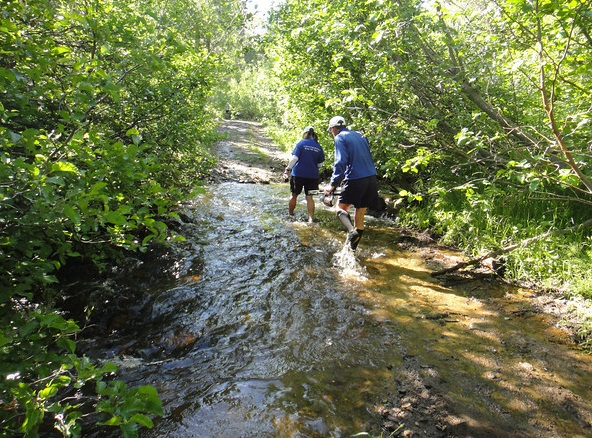 One of the stream crossings